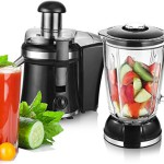 2in1 / 1,5 L.Smoothie Maker Ice Crusher + Saftpresse Entsafter Glas Standmixer 800 Watt