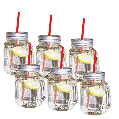 6er-Set Trinkglas mit Schraubdeckel, Henkel und rotem Strohhalm 400ml - Wespenschutz