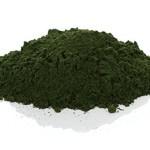 BIOKRÄFTE Bio Chlorella Pulver 200g - zertifizierte Ergänzung (1 PACKUNG)