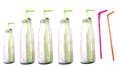 Trinkgläser Flaschen mit Deckel und Trinkhalm 6 Flaschen Gläser Set a 500 ml + Reinigungspinsel blau/rot