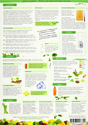 Grüne Smoothies in 5 Minuten (2016) -: Ideen und Anregungen um die gesunde Mini-Mahlzeit für die ganze Familie richtig zuzubereiten - (DINA4 - 2 Seiten - hochwertig, glänzend laminiert)