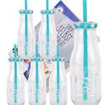 6er Set Glasflaschen mit Deckel und Trinkhalm inkl. Rezeptheft - Hellblau kariert - 400 ml Trinkflasche / Trinkglas mit Relief - für Säfte, Smoothies und andere Erfrischungsgetränke